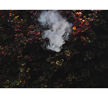 Smoke and Leaves 2/3 Photographic Print