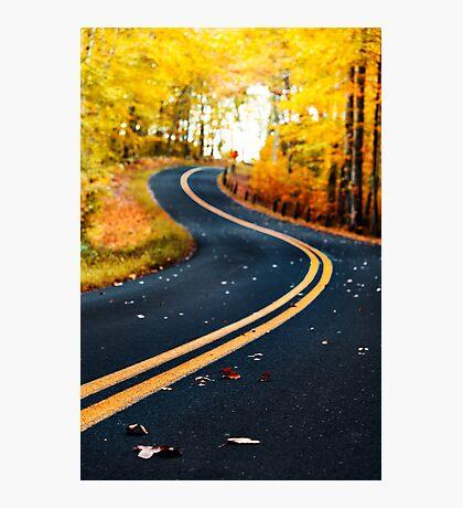 road on autumn Photographic Print
