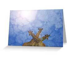 Giraffe Background - African Wildlife Splendor - Blue Wonder and Colors in Nature Greeting Card