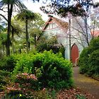 St George's Anglican Church Mt Wilson - Spring 2015 by Bev Woodman