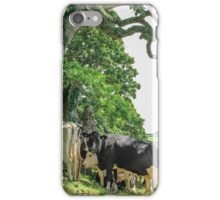 Cows Under Tree iPhone Case/Skin