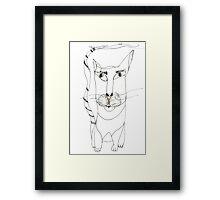 Magoo Framed Print