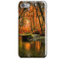 I'll Take It ~ Fall Colors On Whittaker Creek ~ iPhone Case/Skin