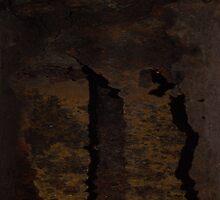 NUCLEI  (Damaged) by leethompson