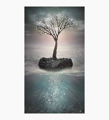 The Roots Below the Earth Photographic Print