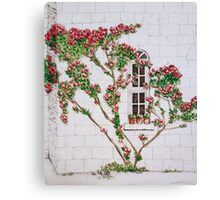 Castle Window Canvas Print