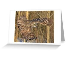 Captain Great Grey to the rescue Greeting Card