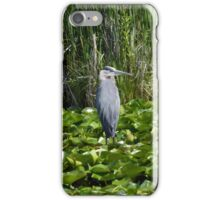 Blue Heron - Minnesota iPhone Case/Skin