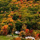 Colorful New Hampshire  by LudaNayvelt