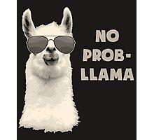 No Problem Llama Photographic Print