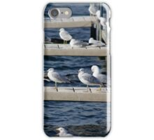 Sea Gull on Docks iPhone Case/Skin