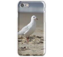 sea gull. iPhone Case/Skin