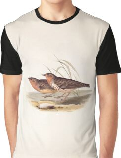 John Gould The Birds of Europe 1837 V1 V5 140 Red Throated Pipit Graphic T-Shirt