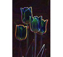 """Tulips in Neon"" Photographic Print"