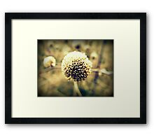 Decaying World Framed Print