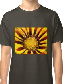 Yellow Gazania Classic T-Shirt