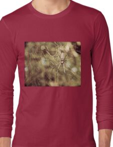 Large tropical spider in the web Long Sleeve T-Shirt