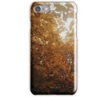 Autumn Day iPhone Case/Skin