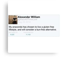 Alex Gaskarth tweet anaconda Canvas Print