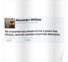 Alex Gaskarth tweet anaconda Poster
