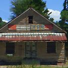 The Old South Country Store by SHickman