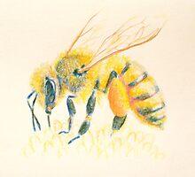 Honey Bee by Deanna Derosia