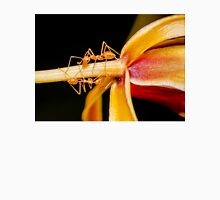 Macro shot of ant walking on a coloured orchid flower Unisex T-Shirt