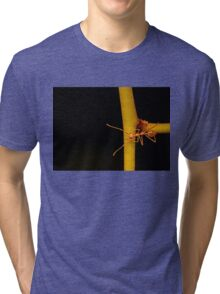Macro shot of ant walking on a coloured orchid flower Tri-blend T-Shirt