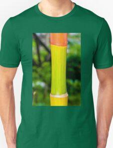 Macro shot of green bamboo texture, nature backgroud Unisex T-Shirt