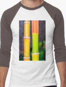 Macro shot of green bamboo texture, nature backgroud Men's Baseball ¾ T-Shirt