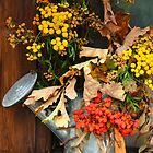 Autumn Decoration by karina5