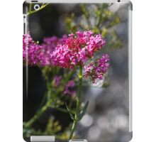 flower in spring iPad Case/Skin