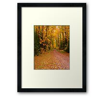 Yellow Walkway Framed Print