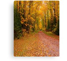 Yellow Walkway Canvas Print