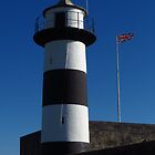 Southsea Castle Lighthouse by wiggyofipswich