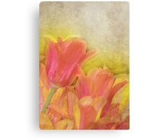 Spring Tulips in Pastels Canvas Print