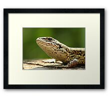 Look to the Skies Framed Print