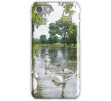 Swans on Lake iPhone Case/Skin