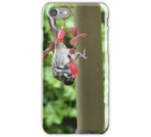 'HI THERE I CAN SEE YOU!' Cheeky wave from Honeyeater! iPhone Case/Skin