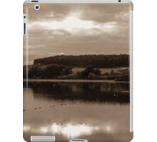 water views iPad Case/Skin