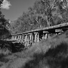 Historic Railway Bridge by Joshua Westendorf