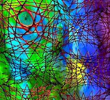 spider web by James E. Thomas