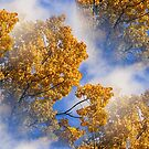 Blue Sky Golden Leaves Nature Pattern by SmilinEyes