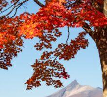 Red Autumn Leaves, Hokkaido, Japan Sticker