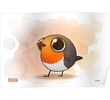 Cute Fat Robin Poster