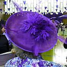 Fashionable Purple Hat by kathrynsgallery