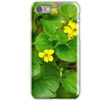 Yellow Violets iPhone Case/Skin