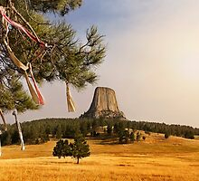 Prayer Cloths on the Trees at Devils Tower National Monument by Alex Preiss