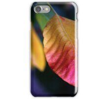 Autumn Foliage iPhone Case/Skin