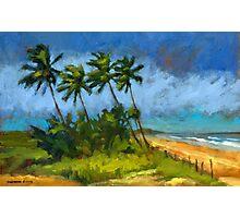 Coqueiros de Massarandupió (Palm Trees, Brazil) Photographic Print